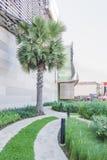 άποψη διακοσμήσεων κήπων εγκαταστάσεων και δέντρων μπροστά από την οικοδόμηση Στοκ Φωτογραφίες