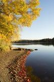 Άποψη λιμνών το φθινόπωρο Στοκ εικόνες με δικαίωμα ελεύθερης χρήσης