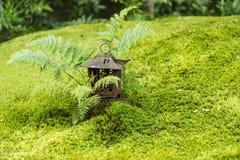 Άποψη κήπων βρύου σε Arashiyama, Κιότο Στοκ Εικόνα