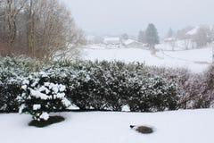 Άποψη κήπων σχετικά με το χειμώνα Στοκ φωτογραφία με δικαίωμα ελεύθερης χρήσης