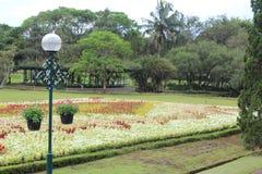 Άποψη κήπων Manicured με το λαμπτήρα στοκ εικόνες