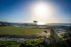 Άποψη κατά μήκος του διάσημου Drive 17 μιλι'ου - Monterey, Καλιφόρνια, ΗΠΑ Στοκ εικόνες με δικαίωμα ελεύθερης χρήσης