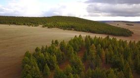 Άποψη κηφήνων του μογγολικού τοπίου φιλμ μικρού μήκους