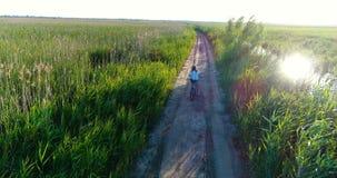 Άποψη κηφήνων του οδηγώντας ποδηλάτου γυναικών στην επαρχία απόθεμα βίντεο