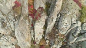 Άποψη κοντά στο βράχο από το έδαφος πλάνο Τοπ άποψη της ανακούφισης βράχου κοντά στην αρχή Οι ζωηρόχρωμοι Μπους και εγκαταστάσεις φιλμ μικρού μήκους