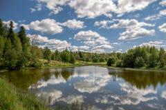 Άποψη κλίσης και μετατόπισης του ηλιόλουστου του χωριού ποταμού με τα σύννεφα, το δέντρο, το έλος και το μπλε ουρανό Στοκ Φωτογραφίες
