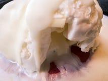 Άποψη λεπτομέρειας ενός πιάτου μπισκότων με το παγωτό Στοκ φωτογραφία με δικαίωμα ελεύθερης χρήσης