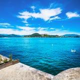 Άποψη λιμνών Maggiore από Arona Κύκνοι και Rocca Di Angera Piedmo Στοκ εικόνα με δικαίωμα ελεύθερης χρήσης