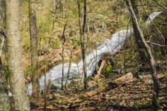 Άποψη μέσω του δάσους των πτώσεων Crabtree στα μπλε βουνά κορυφογραμμών της Βιρτζίνια, ΗΠΑ Στοκ Φωτογραφίες