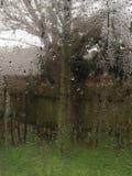 Άποψη μέσω του παραθύρου κατά τη διάρκεια του ντους βροχής Στοκ εικόνες με δικαίωμα ελεύθερης χρήσης
