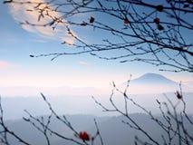 Άποψη μέσω των κλάδων πέρα από τη βαθιά misty κοιλάδα μέσα στη χαραυγή Ομιχλώδες και misty πρωί Στοκ Εικόνα