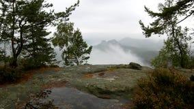 Άποψη μέσω των κλάδων στη βαθιά misty κοιλάδα μέσα στη χαραυγή Ομιχλώδες και misty πρωί στο σημείο άποψης ψαμμίτη φιλμ μικρού μήκους