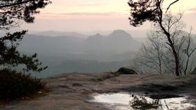 Άποψη μέσω των κλάδων των δέντρων στη βαθιά misty κοιλάδα μέσα στη χαραυγή Αιχμές ψαμμίτη που αυξάνονται από το ομιχλώδες υπόβαθρ απόθεμα βίντεο
