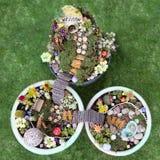 Άποψη ματιών πουλιών του κήπου νεράιδων σε ένα δοχείο λουλουδιών Στοκ Εικόνες
