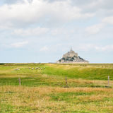 Άποψη με τα πρόβατα και mont το αβαείο του Saint-Michel Στοκ φωτογραφία με δικαίωμα ελεύθερης χρήσης