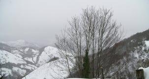 Άποψη μιας κορυφής δέντρων στα βουνά που καλύπτονται από το χιόνι φιλμ μικρού μήκους