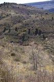 Άποψη μιας μικρής κοιλάδας με την ξηρά βλάστηση Στοκ Φωτογραφία