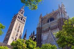 Άποψη μιας πλευράς του καθεδρικού ναού της Σεβίλης, Ισπανία στοκ εικόνα με δικαίωμα ελεύθερης χρήσης