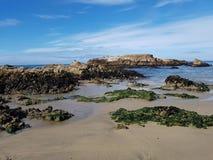Άποψη μιας όμορφης παραλίας σε Καλιφόρνια στοκ φωτογραφία με δικαίωμα ελεύθερης χρήσης