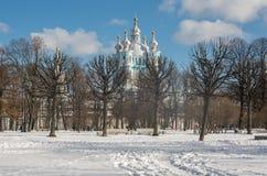 Άποψη μονών Smolny καθεδρικών ναών Smolny από το πάρκο Smolny στο winte Στοκ Φωτογραφία