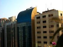 Άποψη μπαλκονιών πόλεων του Αμπού Ντάμπι με το πέταγμα και τα λουλούδια πουλιών απόθεμα βίντεο