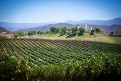 Άποψη ναυπηγείων κρασιού σε Temecula, Καλιφόρνια στοκ εικόνες