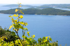 άποψη νησιών αμπέλων και θάλασσας στοκ εικόνες