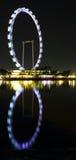 Άποψη νύχτας του ιπτάμενου Σινγκαπούρης Στοκ Φωτογραφία
