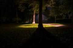 Άποψη νύχτας των θέσεων λαμπτήρων ολλανδικών πάρκων και αστραπής Στοκ φωτογραφία με δικαίωμα ελεύθερης χρήσης