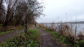 Άποψη πάρκων και γύρος ποδηλάτων απόθεμα βίντεο