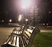 Άποψη πάρκων νύχτας τριών πάγκων και φω'των στοκ εικόνα