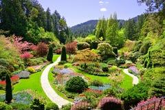 Άποψη πέρα από τα ζωηρόχρωμα λουλούδια ενός κήπου στην άνοιξη, Βικτώρια, Καναδάς στοκ φωτογραφία