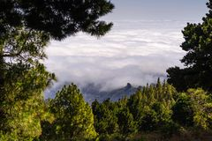 Άποψη πέρα από τα σύννεφα, δέντρα πεύκων στο πρώτο πλάνο, θλγραν θλθαναρηα Στοκ Εικόνες