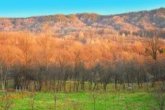 Άποψη πέρα από την κοιλάδα και τους λόφους σε μια ηλιόλουστη ημέρα άνοιξη Τοπίο χώρας στοκ εικόνα