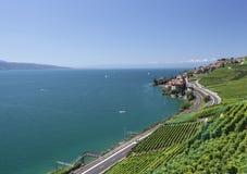Άποψη πέρα από τη λίμνη Γενεύη από τις αμπέλους Lavaux Στοκ φωτογραφία με δικαίωμα ελεύθερης χρήσης