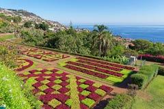 Άποψη πέρα από τον κήπο Jardim Botanico στο νησί της Μαδέρας στοκ εικόνες