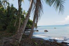 Άποψη πέρα από τον κόλπο παπιών στη Κόστα Ρίκα Στοκ Εικόνα