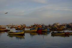 Άποψη πέρα από το λιμένα αλιείας του arica στη Χιλή στοκ εικόνα με δικαίωμα ελεύθερης χρήσης