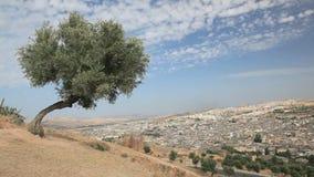 Άποψη πέρα από Medina Fes, Μαρόκο