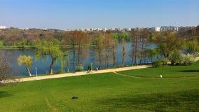 Άποψη πανοράματος των ανθρώπων που χαλαρώνουν στις νεολαίες του Βουκουρεστι'ου το δημόσιο πάρκο Parcul Tineretului την άνοιξη απόθεμα βίντεο