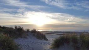 Άποψη παραλιών με τους αμμόλοφους Στοκ εικόνα με δικαίωμα ελεύθερης χρήσης
