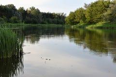 Άποψη ποταμών Στοκ Εικόνες