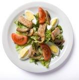 Σαλάτα κρέατος που εξυπηρετείται στο άσπρο πιάτο Στοκ φωτογραφία με δικαίωμα ελεύθερης χρήσης