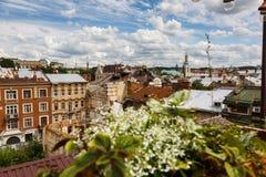 Άποψη πόλεων Lviv, παλαιές στέγες, πανόραμα του ιστορικού κέντρου πόλεων στοκ εικόνα με δικαίωμα ελεύθερης χρήσης