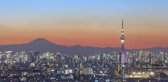 Άποψη πόλεων του Τόκιο και δέντρο ουρανού του Τόκιο με την ΑΜ Φούτζι στοκ φωτογραφία με δικαίωμα ελεύθερης χρήσης