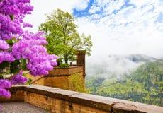 Άποψη στην ελαφριά ομίχλη από το κάστρο Hohenzollern με το λουλούδι Στοκ φωτογραφίες με δικαίωμα ελεύθερης χρήσης