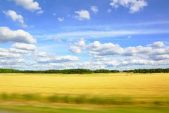 Άποψη σχετικά με έναν τομέα μια θερινή ημέρα Στοκ φωτογραφία με δικαίωμα ελεύθερης χρήσης