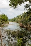Άποψη σχετικά με εθνικό park alejandro de humboldt με τον ποταμό Κούβα στοκ εικόνα