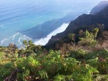 Άποψη σχετικά με τα μπλε κύματα θάλασσας από τα πράσινα cllifs ύψους με τις φτέρες ι Στοκ φωτογραφίες με δικαίωμα ελεύθερης χρήσης