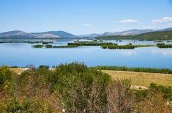 Άποψη σχετικά με τη λίμνη Deransko, το πάρκο φύσης Hutovo Blato, τη Βοσνία και Herz Στοκ Εικόνες
